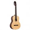 Ortega RST5M classical guitar