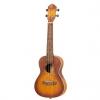 Ortega Earth Series RUDAWN concert ukulele