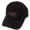 EVH Baseball Hat