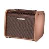 Fishman Loudbox Mini Charge guitar amplifier