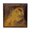 Pirastro 315421 Evah Pirazzi Gold E