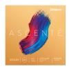 D'Addario Ascente A-310M 4/4, Medium Saiten für Violin