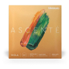 D′Addario Ascente A410MM Medium Scale viola strings, medium